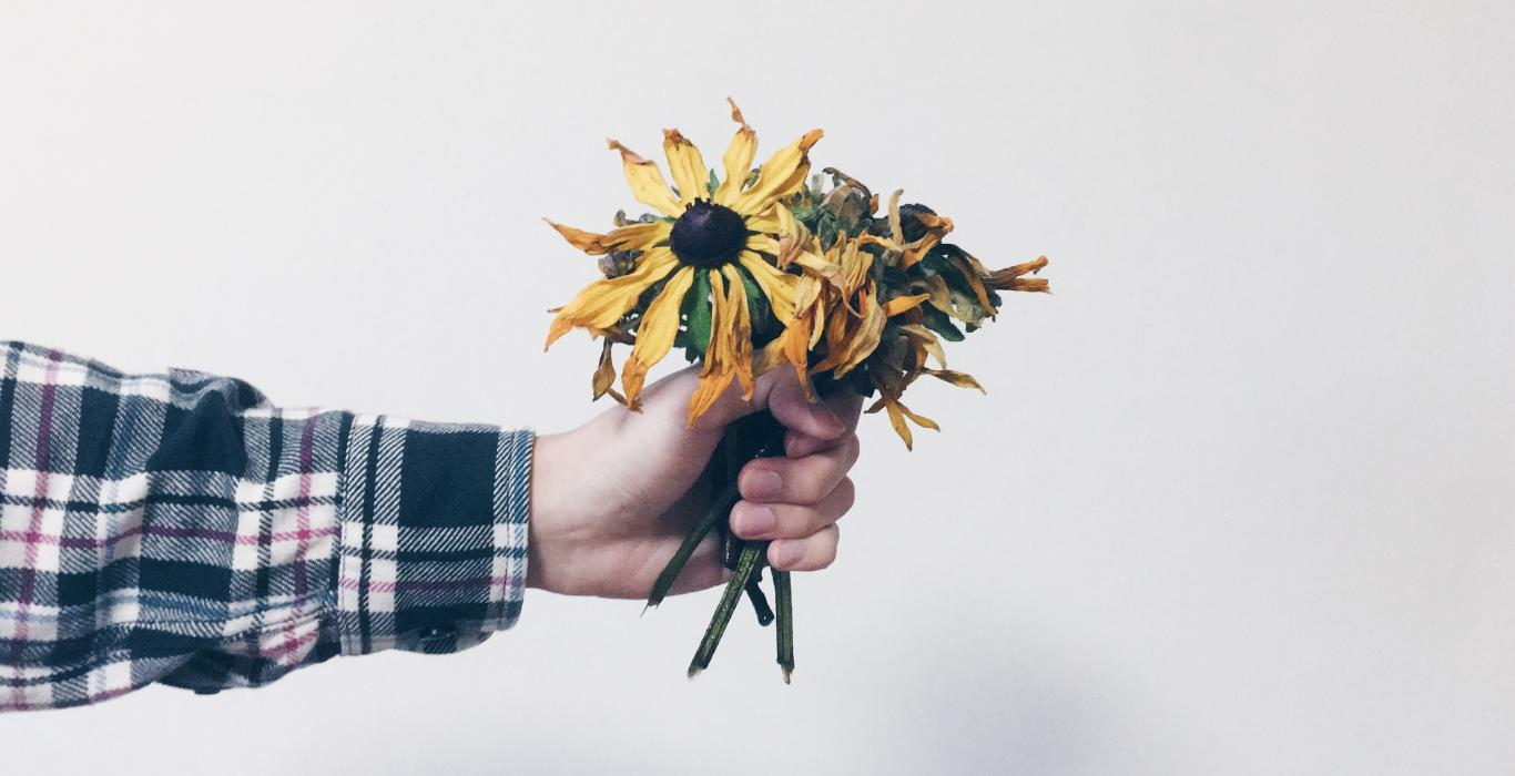 outstretched arm holding bought of flowers